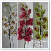 Orchidėjos šaka, bordo sp. G16