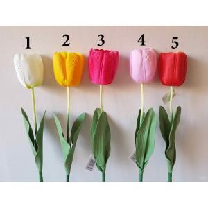 G1219 Tulpė 5 sp, 64 cm