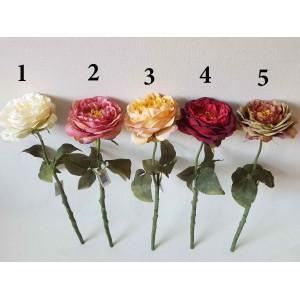 Pinavijinės rožės su koteliu  G1749