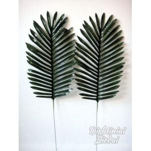 Palmės lapas G1821
