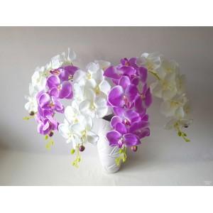 Orchidėjos šaka G1786