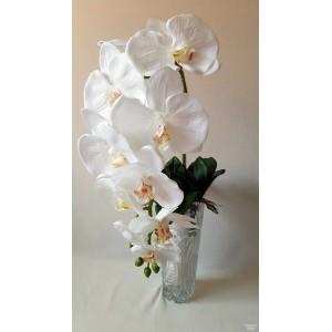 Orchidėjos šaka lateksinė dideliais žiedais, 1 m. balta sp., G1874