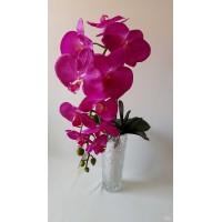 Orchidėjos šaka lateksinė dideliais žiedais, 1 m. violetinė sp., G1874