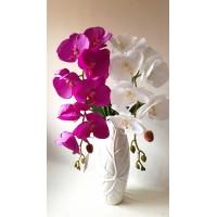 Orchidėjos šaka lateksinė vidutiniais žiedais, 1 m., G1900