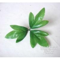 Lapas chrizantemos 3 dalių, 200 gr., G1812
