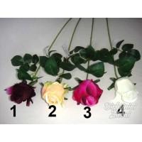 G1003 rožė su kotu 63 cm