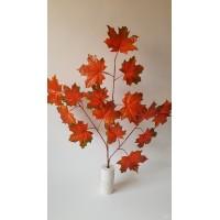Klevo lapų šaka rudeninė sp., G2071