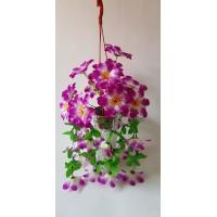 Kabantis vazonėlis 28 žiedai, violetinė sp., G1794