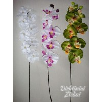Orchidėjų šaka 8+2 ž. G1565