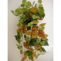Lapai svyrantys šiurkščiu lapu, žali/rudi, G1269